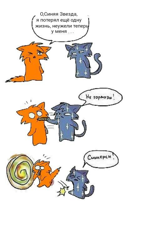 Смешные картинки котов воителей, день
