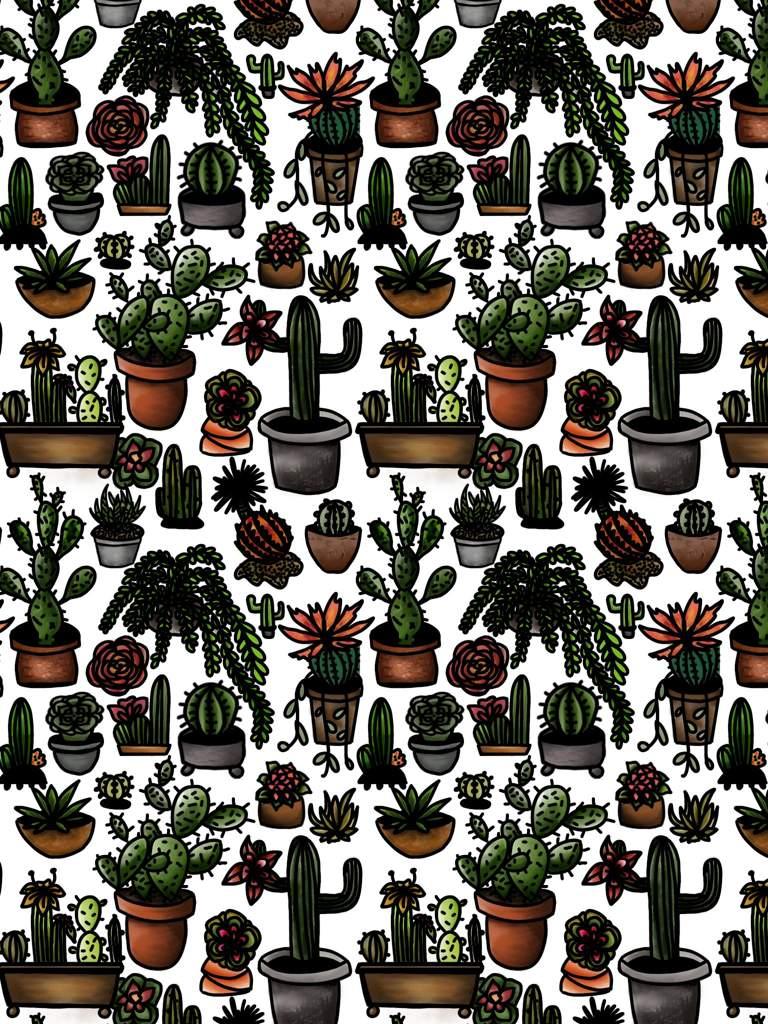Cactus, aloe plant, succulent and friends  | Art Amino