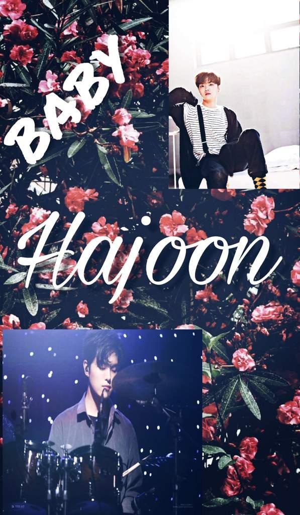 Hajoon Wallpaper The Rose Amino