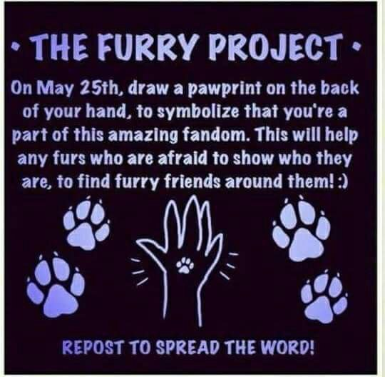 find furries near you