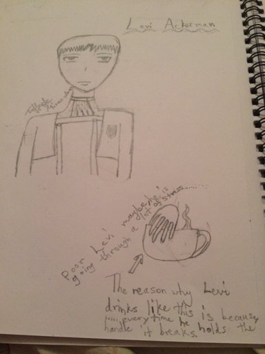 Choice!(Levi X Reader Part 1)   Attack On Titan Amino