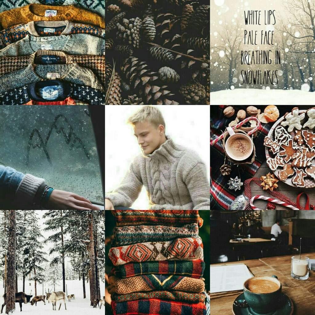 Denmark Plus A Oc Aesthetic Sweater Weather Lyrics Hetalia Amino