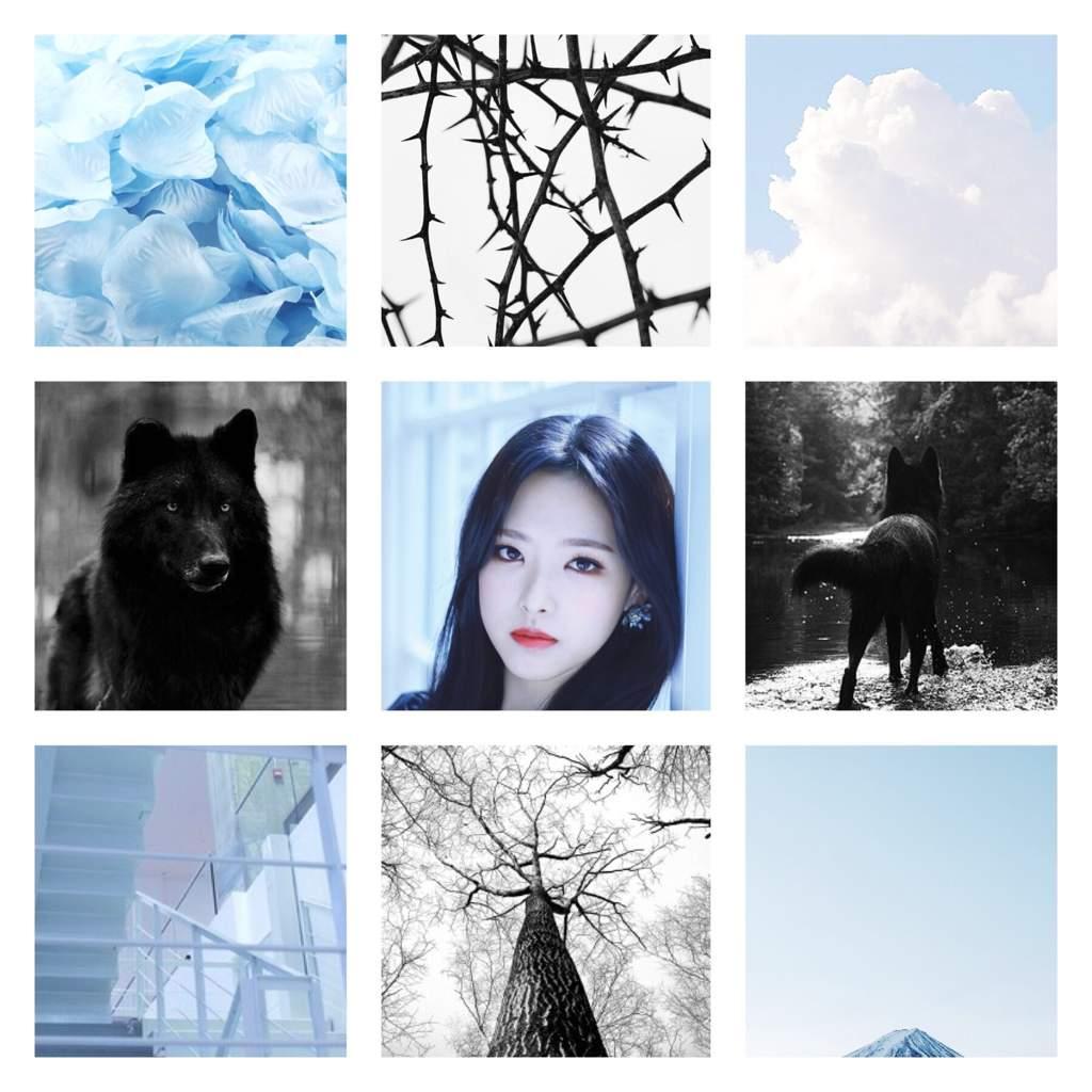 Olivia Hye Black White And Baby Blue Aesthetic Loopd Amino Amino