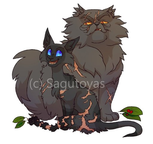 Warriors A Vision Of Shadows Online: Warrior Cats Family Tree Warrior Cats T Warrior Cats Cats