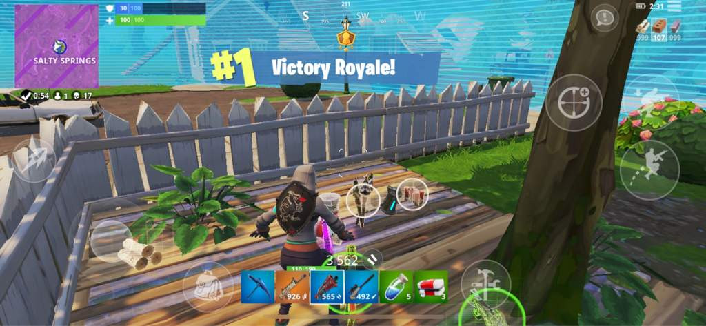 17 Kill Solo Showdown Victoryroyale This Is My Lowest High