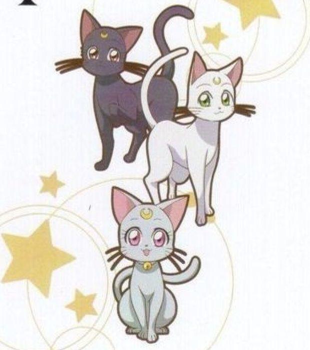 Luna Artemis Y Diana Wiki Sailor Moon Amino