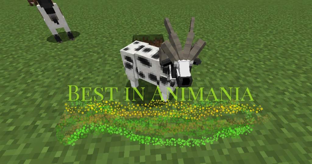 🐄 - Best in Animania Mobs - 🐑 | Minecraft Amino
