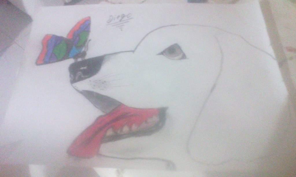 Mipropioarte Hola A Todos Este Es Mi Dibujo De Un Perro Con Una