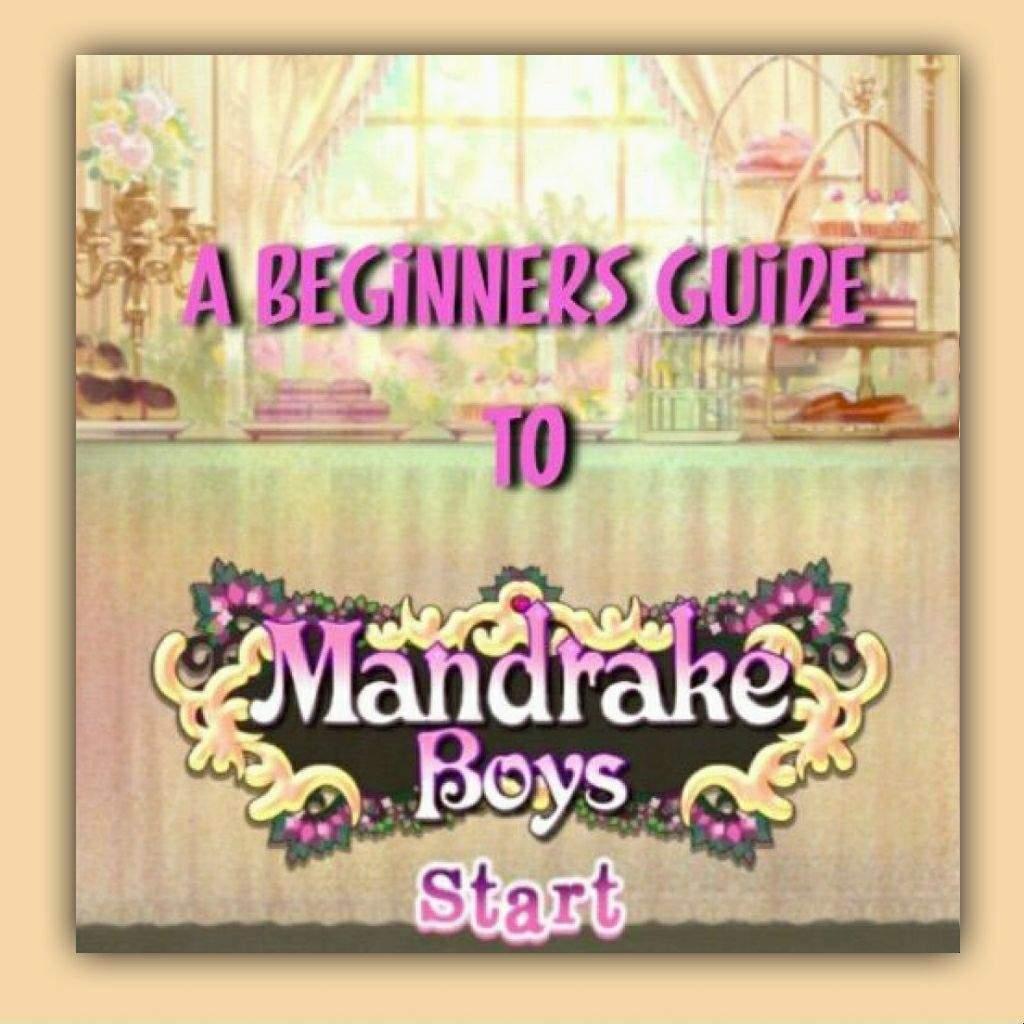 ❁ A Beginners Guide to Mandrake Boys ❁ | Virtual Space Amino