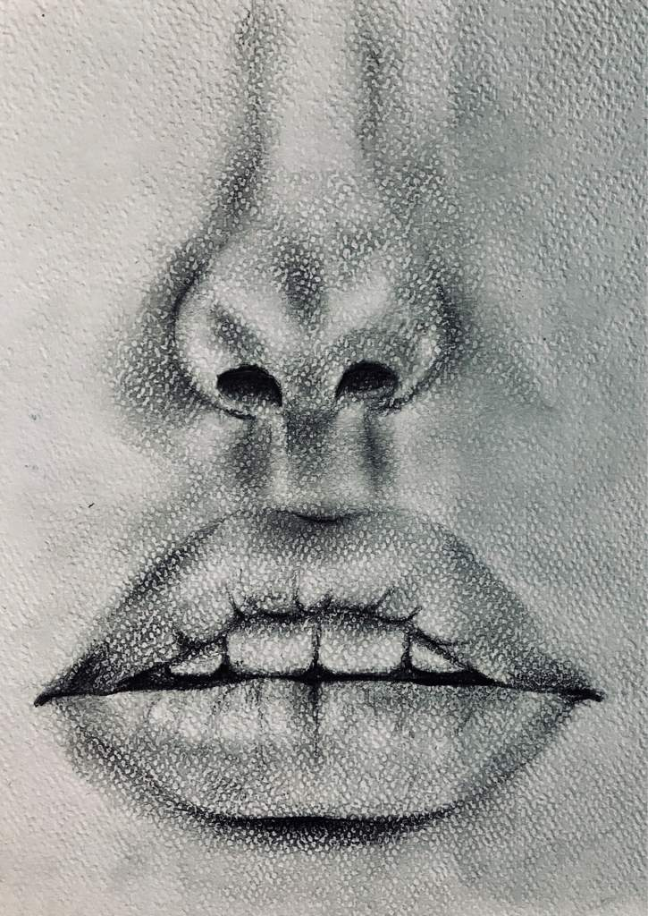 Realistic Nose And Lips With Charcoal Art Amino