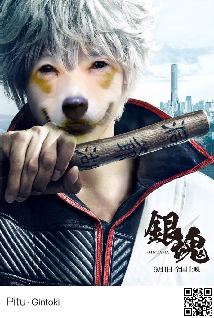 Is Popular In China To The Point That It Has Gintama Filters I Used A Picture Of My Friends Corgi Be Gintoki And Sougo They Look Super Epic