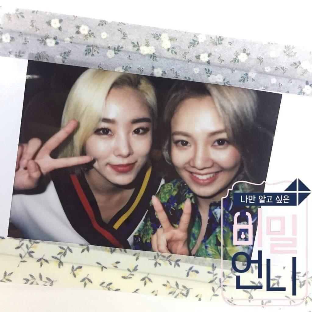ARTICLE] Secret Unnie EP  5 - Hyoyeon/Wheein | MAMAMOO Amino