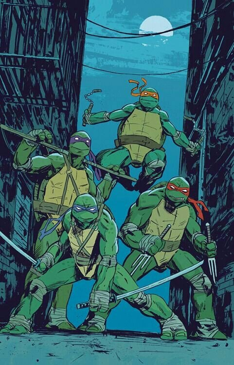 Top 5 Melhores Desenhos Das Tartarugas Ninjas Tmnt Tartarugas