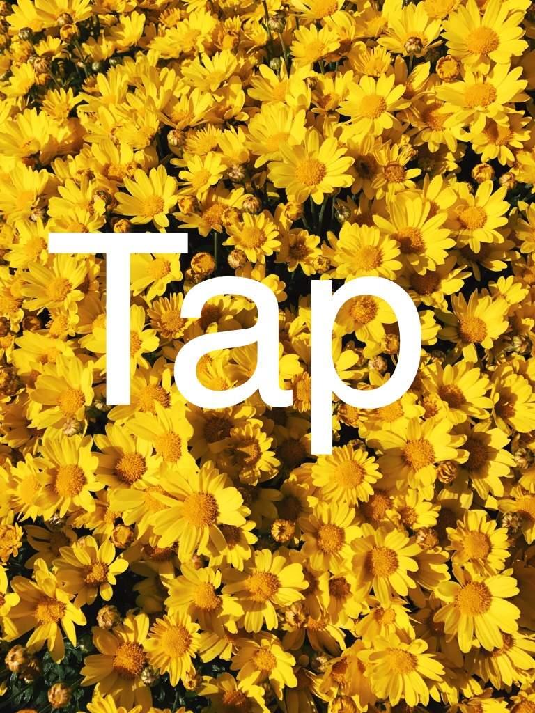 Angie yonaga pfp edit set danganronpa amino apps used livecollagepicsartflower crown photo editor and snapchat izmirmasajfo