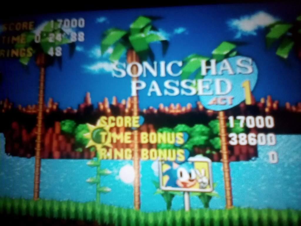 My Green Hill Zone Speedrun Sonic The Hedgehog Amino