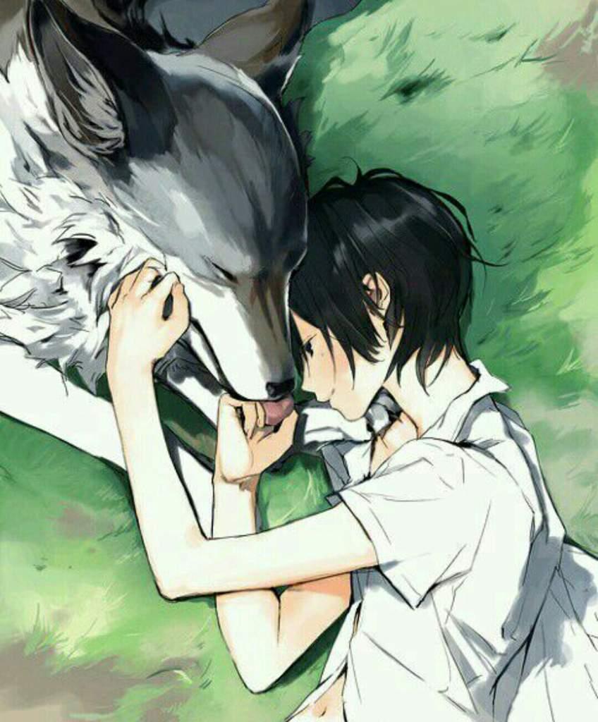 Картинки аниме волк парень