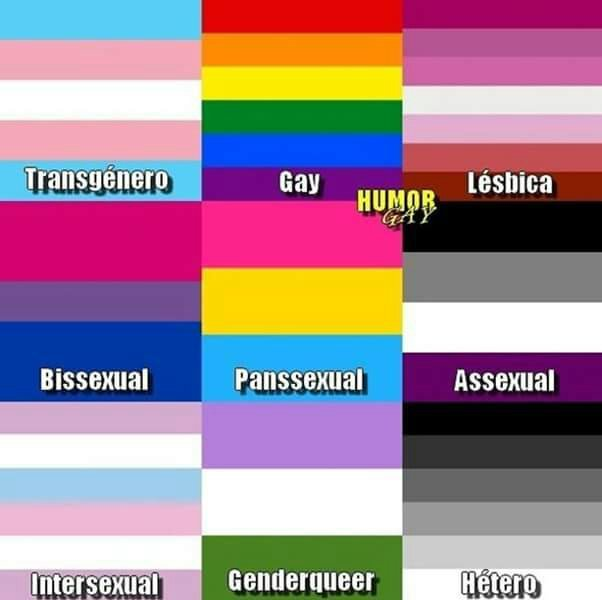 Qual a bandeira de vocês?! Me: Bandeira Trans!!