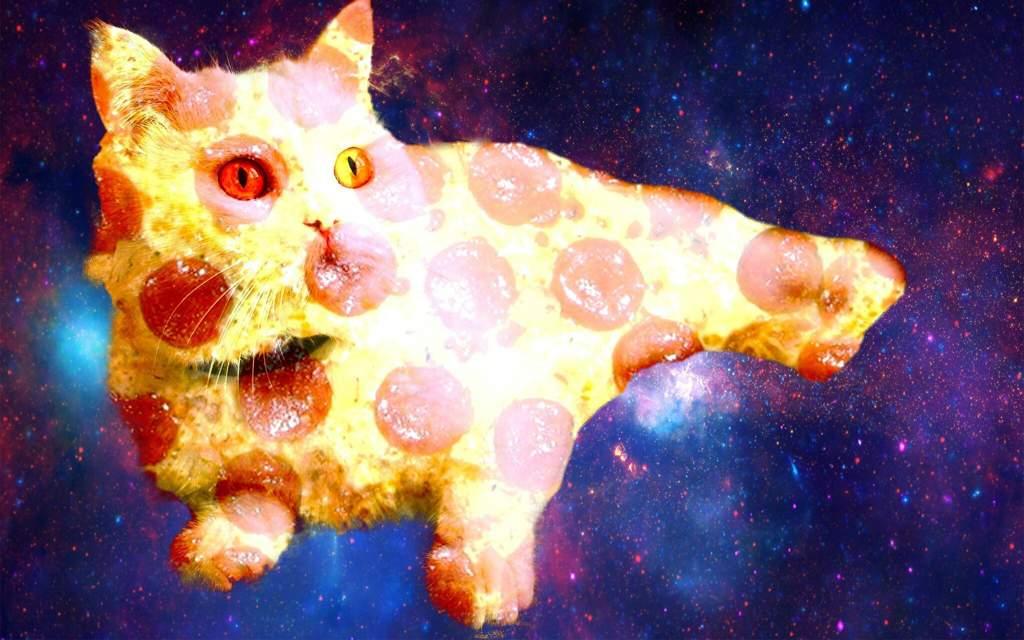 картинки на рабочий стол коты в космосе омлет макаронами