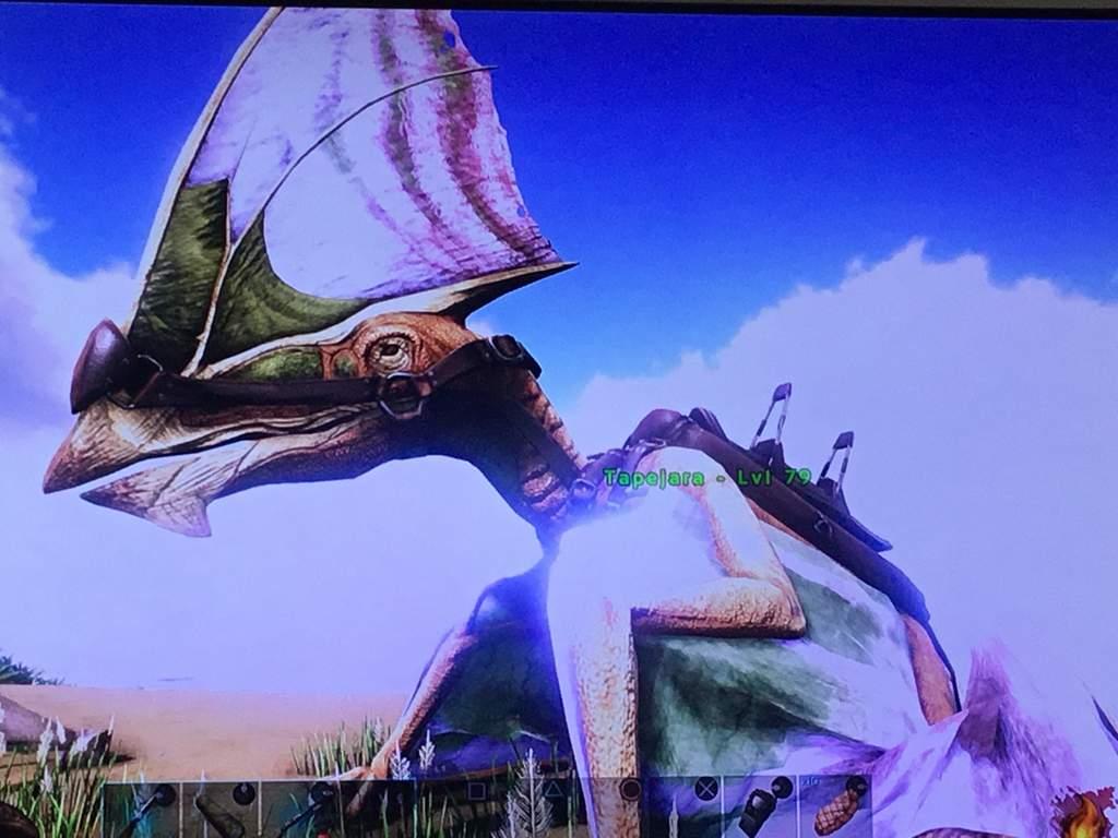Tapejara Names Ark Survival Evolved Amino Rare flowers, honey \u0026 agro darts! tapejara names ark survival evolved