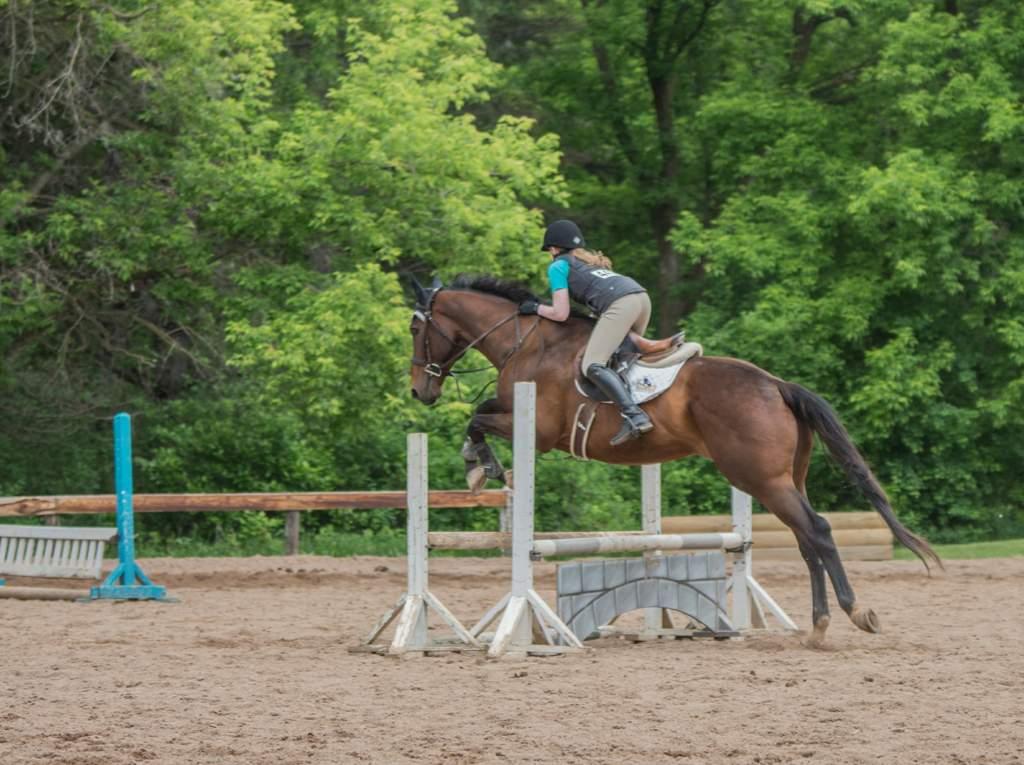 Riding Fails Equestrian Amino