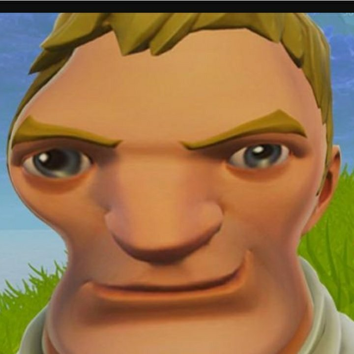 The Fortnut Default Skin
