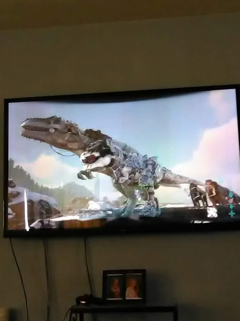 f3583f823f Giganotosaurus vs T-Rex | Ark Survival Evolved Amino