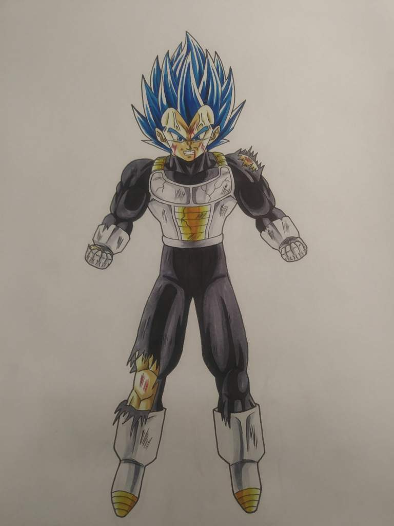 Drawing Vegeta Super Saiyan Blue Evolution Dragonballz Amino