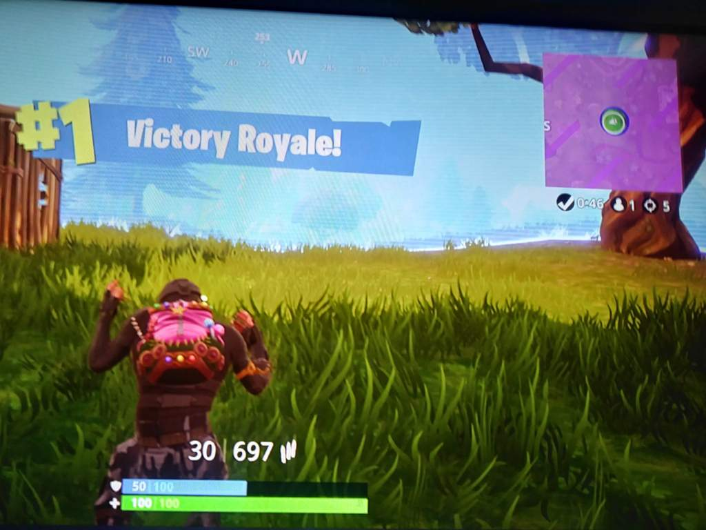 Fortnite Solo Victory With 5 Kills Fortnite Battle Royale