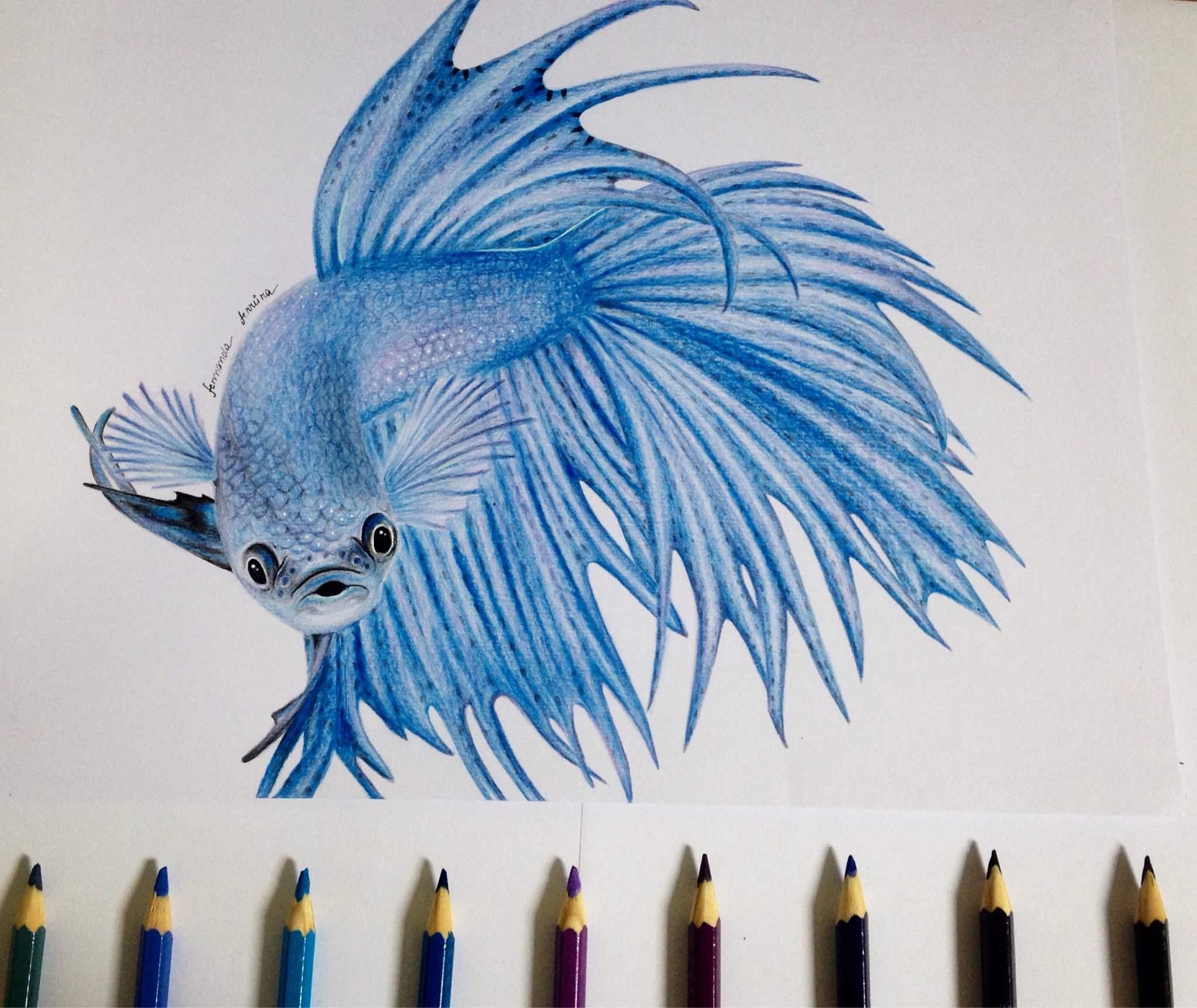 Peixe Palhaco P Y22 Desenho De Yaster Gartic