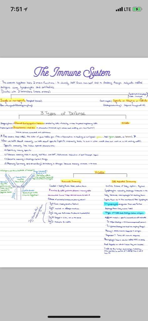 Anatomy & Physiology 2 Notes | Studying Amino Amino