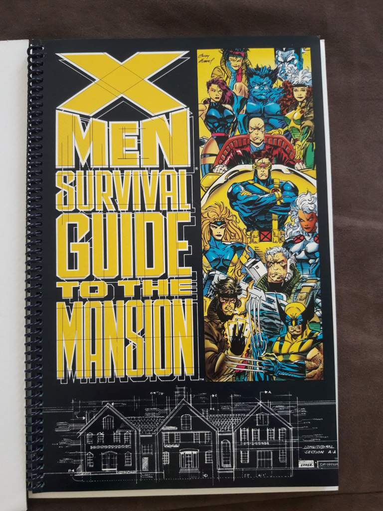 I found this going through my stack of comics and thought I'd share. I love this  book, it's pretty cool. This is also a great handy little book for an X-Men  ...