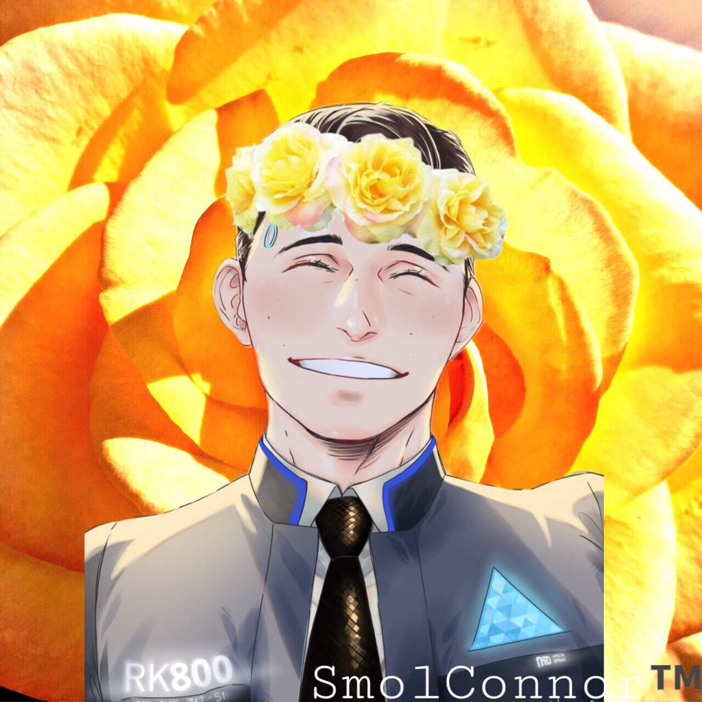 Yellow flower crown connor edit detroitbecome human official amino izmirmasajfo