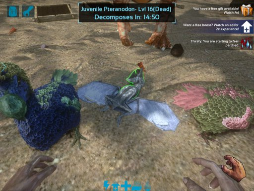how to play ark survival evolved multiplayer free