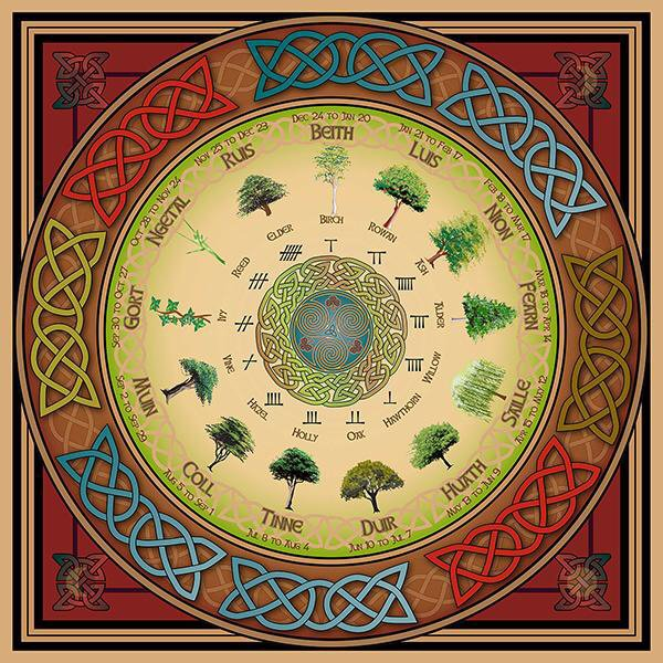The Celtic Tree Calendar Pagans Witches Amino