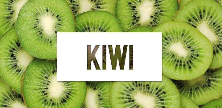 vista de pájaro kiwi y diabetes