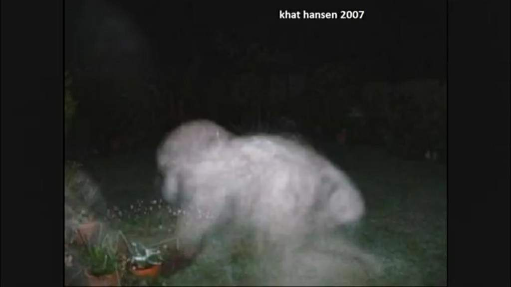 Possible dogman caught on a trail cam its not mine but just