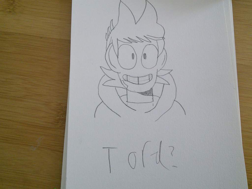 I Draw Most Of Teh Gang And Lucy Crash Zoom Eddsworld Amino