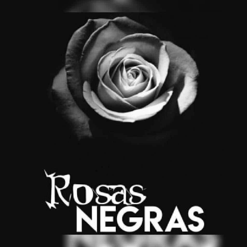 Rosas Negras Wicca Y Paganismo Amino