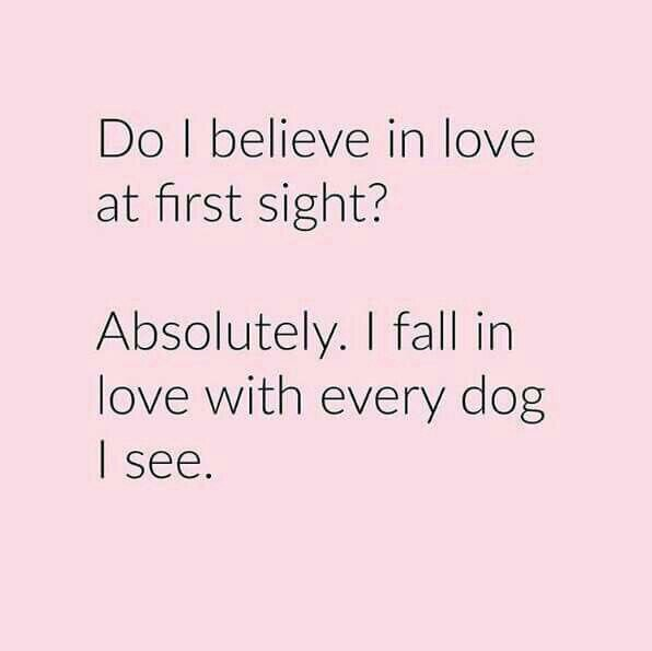 Do you believe in love at first sight why