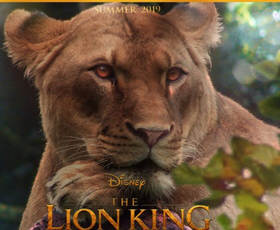 The Lion King 2019 The Lion Guard Amino
