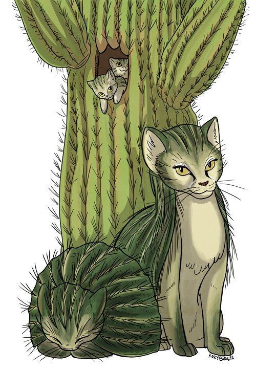 Картинки с кактусом и кошкой