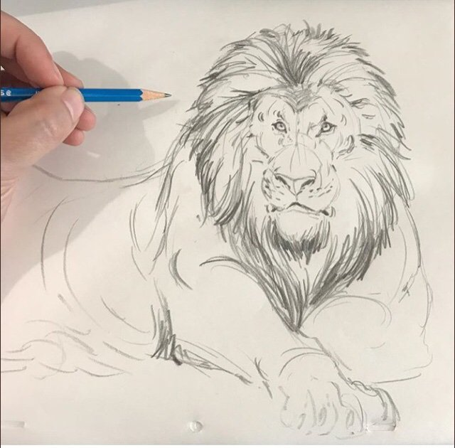 The Lion King 2019 Concept Art The Lion King Amino Amino
