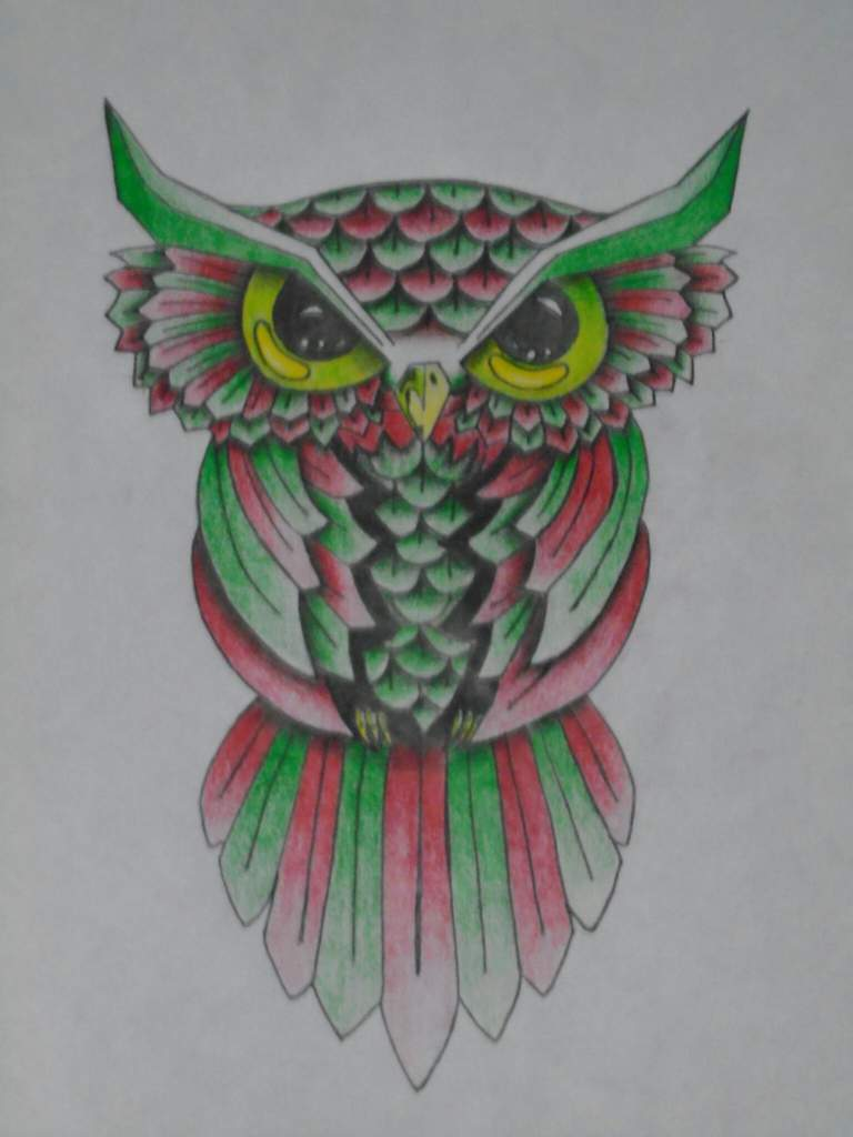 Dibujo De Un Búho Abstracto A Color Arte Amino Amino