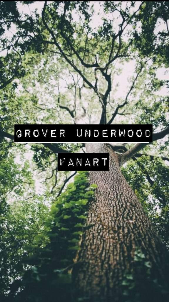 Grover Underwood Fanart Halfblood Amino