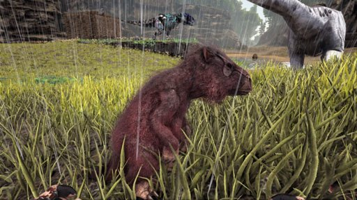 Latest Ark Survival Evolved Amino