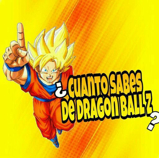 dragon ball porb