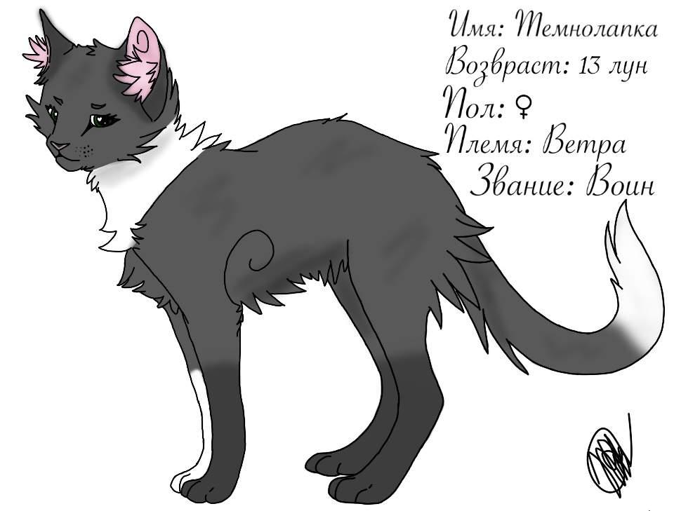 приготовить имена воителей коты воители сыном
