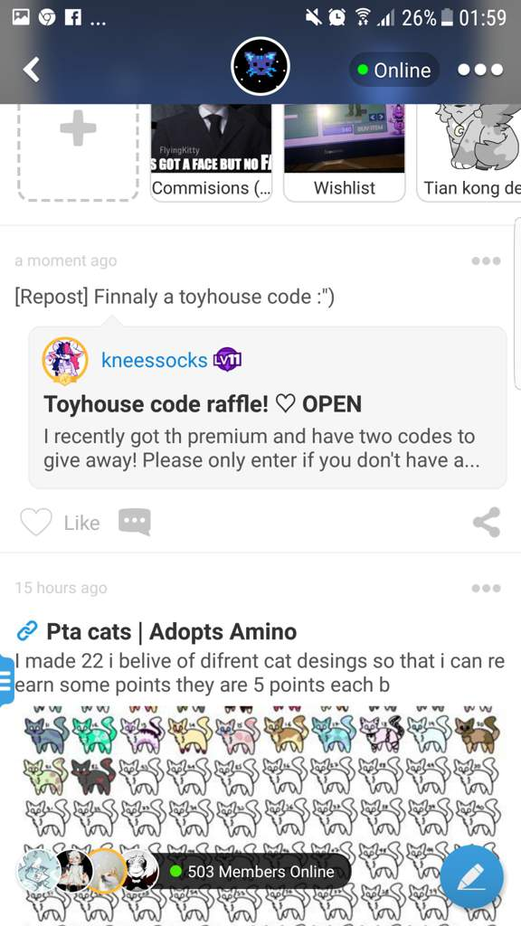 What Is A Toyhouse Code