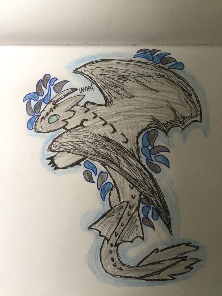 Night Fury Drawing H T T Y D Amino