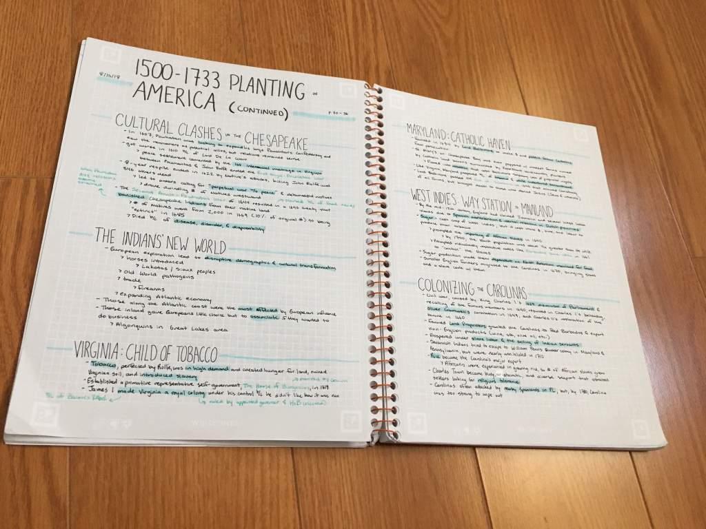 AP US HISTORY NOTES 2 0   Studying Amino Amino